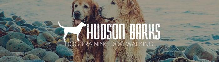dog walking services in weehawken