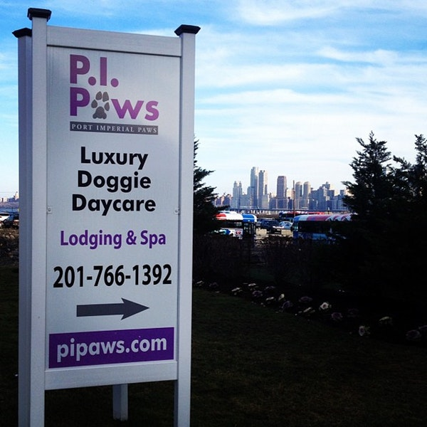 local weehawken city dog daycare
